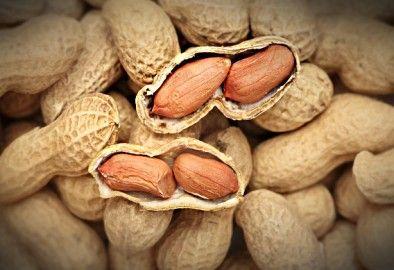 Арахис — польза, вред и свойства ореха