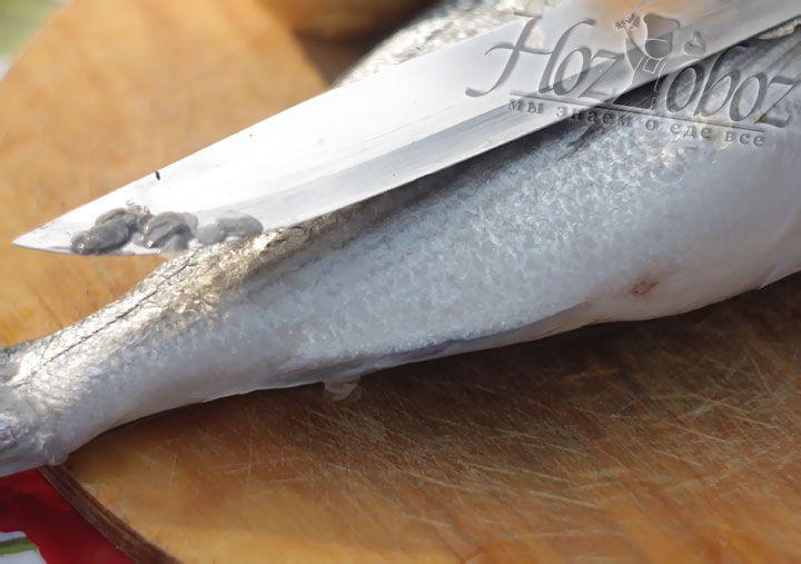 Рыбу следует освободить от шелухи, орудуя ножем против чешуек