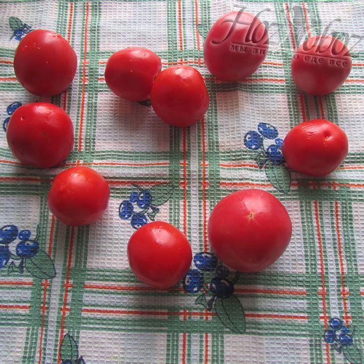 Помытые томаты просушиваем полотенцем