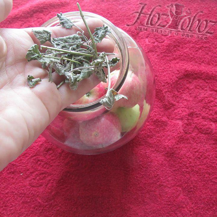 В заготовку необходимо добавить несколько веточек мяты или другие пряности по вкусу