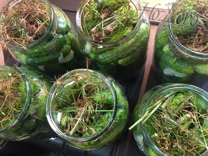 Поверх овощей распределим оставшуюся зелень