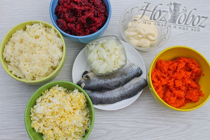 Отваренные овощи и яйца сперва остудим а затем измельчим на крупной терке. Репчатый лук просто нарежем кубиками