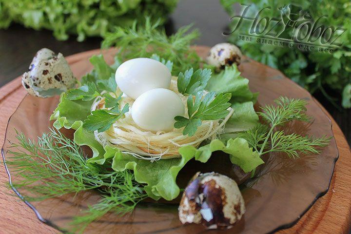 Теперь готовое «перепелиное гнездо» украсим зеленью  так чтобы создавалась иллюзия того, что гнездо как бы спрятано в ней. Кстати, для сервировки можно использовать даже оставшуюся в процессе приготовления яичную скорлупу