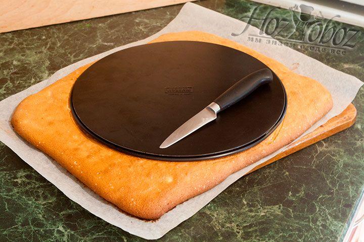 Вырезаем в бисквите круг, приложив нижнюю часть разъёмной формы, используемой для дальнейшего формования торта