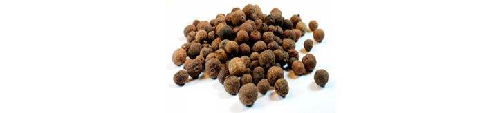 Пимент или гвоздичный перец (pimenta-dioica)