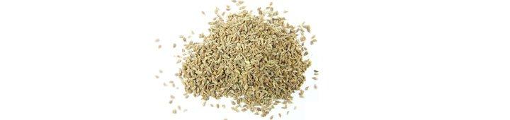 Анис (pimpinella-anisum)