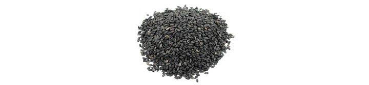 Черный кунжут (sesamum indicum)