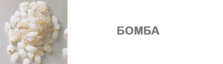 ris-bomba
