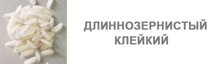 ris-kleykiy-dlinnozernistiy