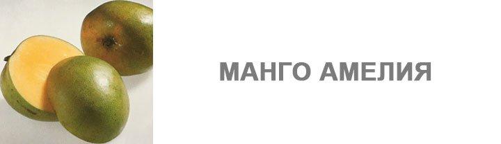 Манго Амелия
