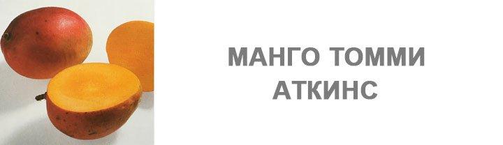 Манго Томми Аткинс