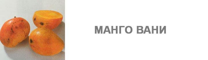 Манго Вани