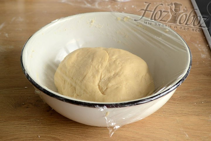 Замешанное тесто укладываем в миску, накрываем пленкой или полотенцем и оставляем на 1-1,5 часа.