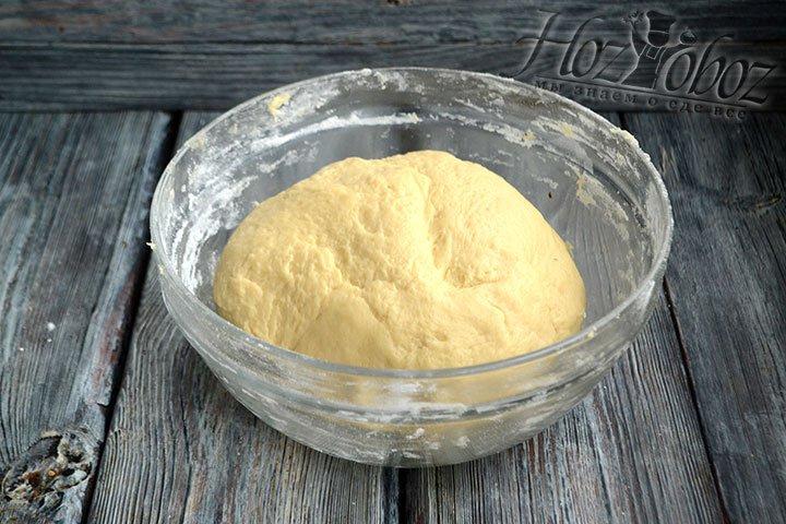 Тесто укладываем в миску, закрываем пищевой пленкой и оставляем в теплом месте на 30-40 минут.