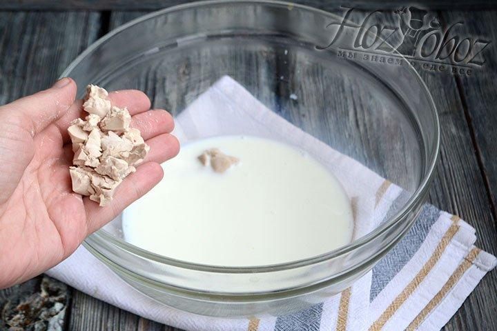 В теплое молоко кладем дрожжи и размешиваем их до полного растворения.